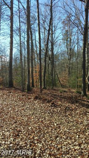 Slash Pine Circle, Ruther Glen, VA 22546 (#CV9533783) :: LoCoMusings