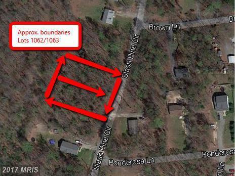 1062 Slash Pine Circle, Ruther Glen, VA 22546 (#CV9772353) :: LoCoMusings