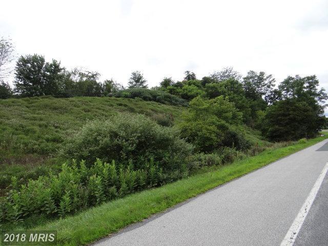 Black Gap Road, Chambersburg, PA 17202 (#FL10015102) :: The Gus Anthony Team