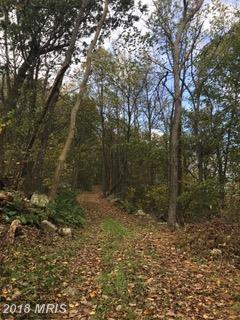 Fannettsburg Road E, Fannettsburg, PA 17221 (#FL10085693) :: Keller Williams Pat Hiban Real Estate Group