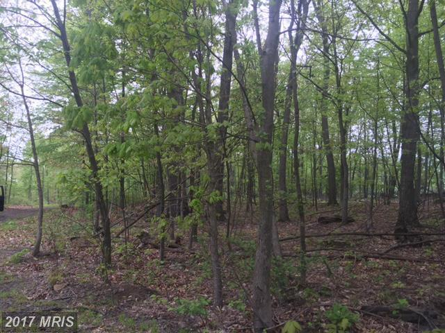 Timmons Road, Spring Run, PA 17262 (#FL9661356) :: Pearson Smith Realty