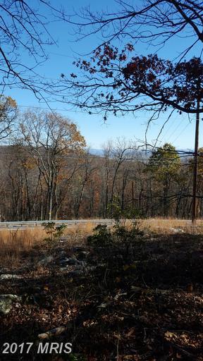 Buchanan Trail W, Mercersburg, PA 17236 (#FL9806722) :: LoCoMusings