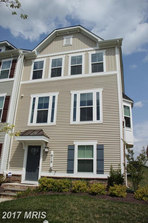 615 Potomac View Parkway, Brunswick, MD 21716 (#FR10025564) :: Pearson Smith Realty