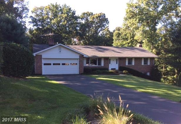 13415 Brandon Manor Court, Mount Airy, MD 21771 (#FR10065066) :: The Maryland Group of Long & Foster