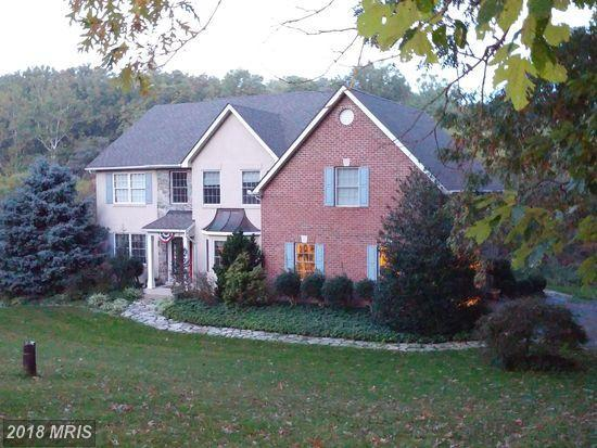 6849 Running Springs Court, Frederick, MD 21703 (#FR10131545) :: Pearson Smith Realty