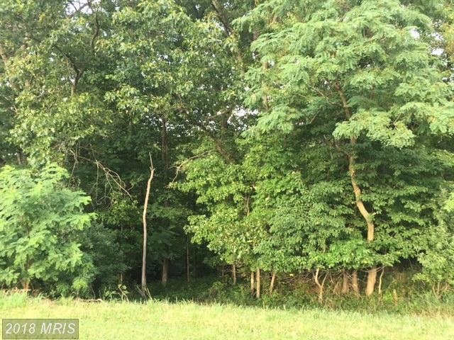 15 Harry Hiett Lane, Gore, VA 22637 (#FV10002770) :: Green Tree Realty
