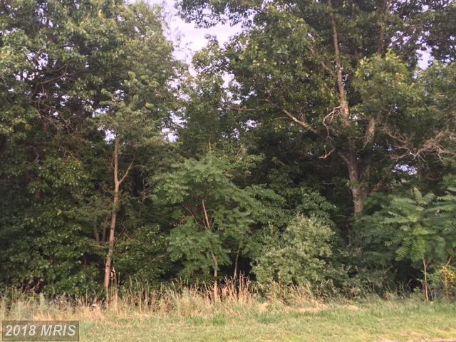 16 Harry Hiett Lane, Gore, VA 22637 (#FV10003586) :: Green Tree Realty