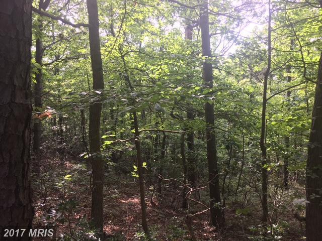 16 Stagg Trail, Winchester, VA 22603 (#FV10004093) :: Pearson Smith Realty