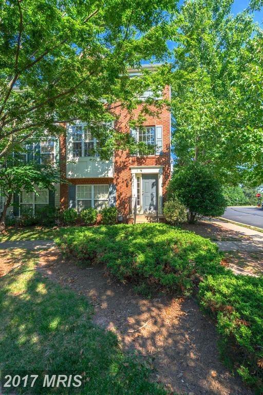 14141 Gabrielle Way, Centreville, VA 20121 (#FX10010984) :: Pearson Smith Realty
