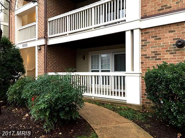 6103 Wigmore Lane D, Alexandria, VA 22315 (#FX10050104) :: LoCoMusings