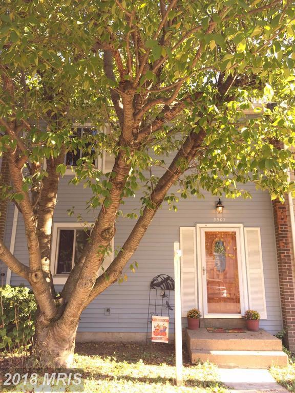 5507 Hollins Lane, Burke, VA 22015 (#FX10073659) :: CR of Maryland
