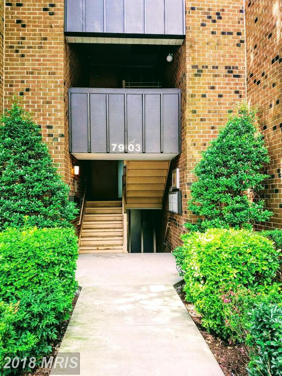 7903 Dassett Court #304, Annandale, VA 22003 (#FX10284391) :: SURE Sales Group
