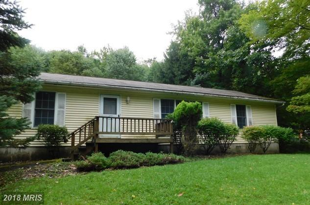 1906 Mosser Road, McHenry, MD 21541 (#GA10109943) :: Pearson Smith Realty