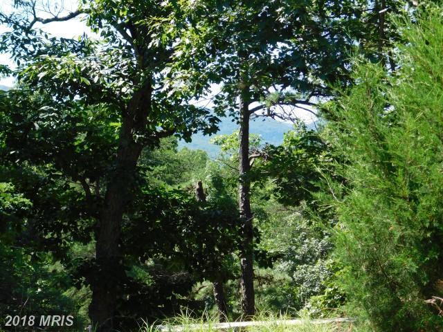 Lot 16 Mountain Lake Retreat, Petersburg, WV 26847 (#GT10305611) :: RE/MAX Gateway