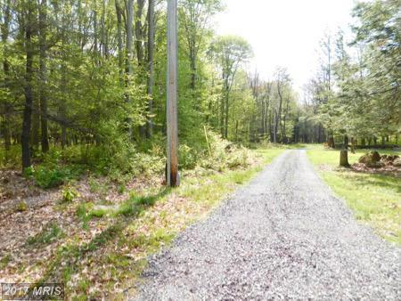 Lot 17 Lakeridge Heights, Mount Storm, WV 26739 (#GT9694219) :: Pearson Smith Realty