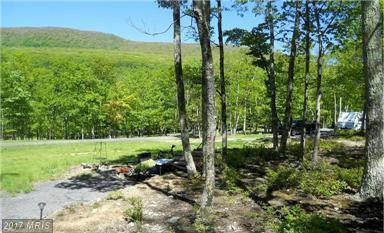 Lot 54 Dolly Sods Retreat, Mount Storm, WV 26739 (#GT9874980) :: Pearson Smith Realty