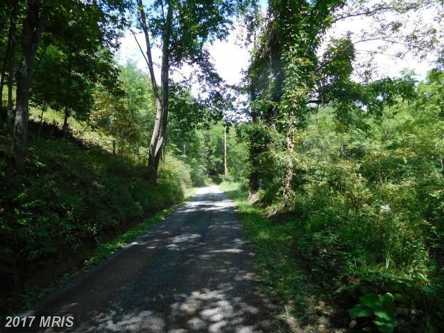 Off Trinity Road/Pine Con Lane, Romney, WV 26757 (#HS9742829) :: LoCoMusings