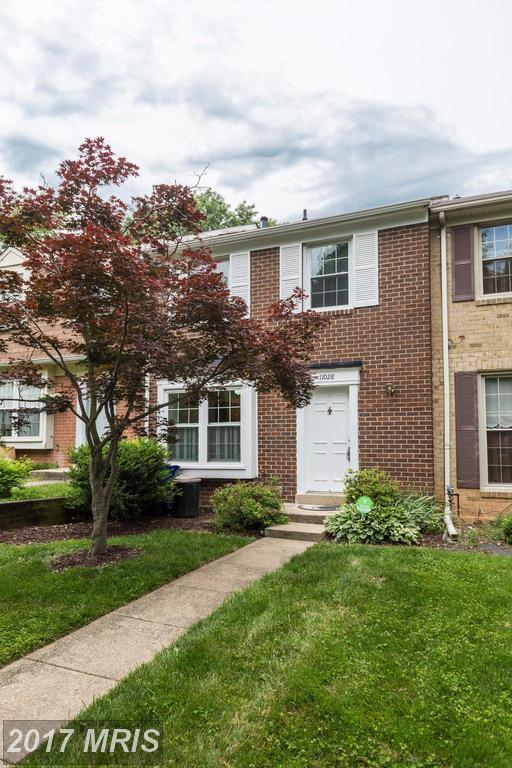 11028 Berrypick Lane, Columbia, MD 21044 (#HW9966899) :: Pearson Smith Realty