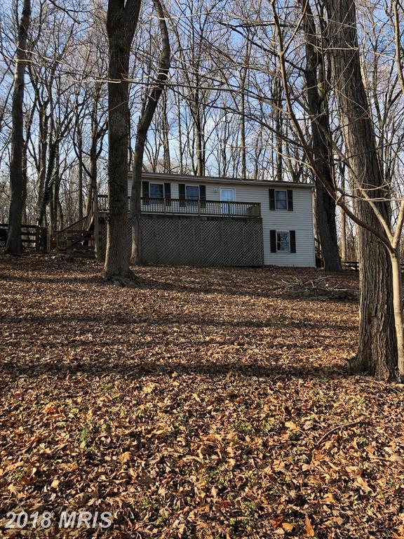 288 Shenandoah River Drive, Harpers Ferry, WV 25425 (#JF10137551) :: The Gus Anthony Team
