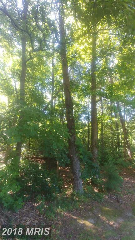 Mathias Point Rd, King George, VA 22485 (#KG10277182) :: Green Tree Realty