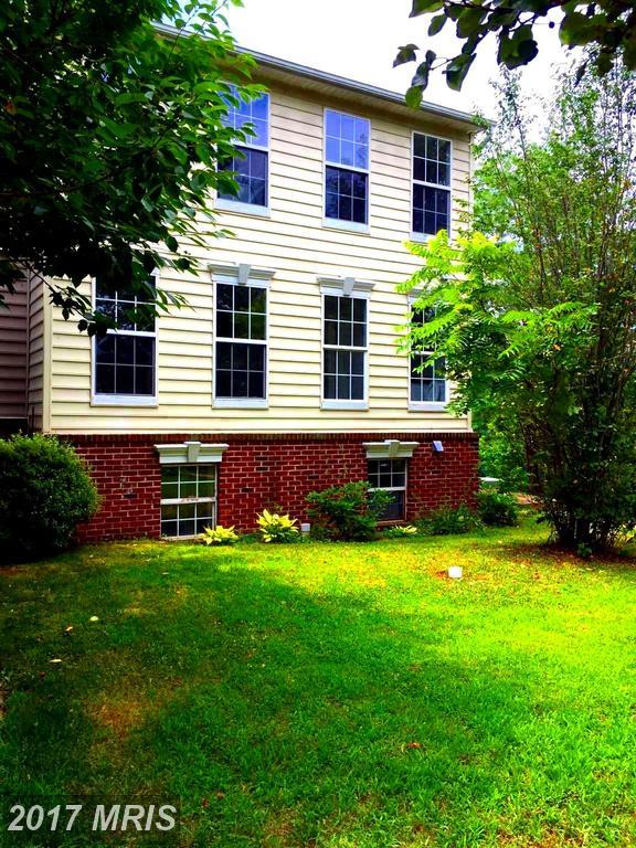 17525 Bristol Terrace, Round Hill, VA 20141 (#LO10006349) :: LoCoMusings