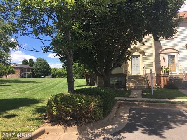 516 Ginger Square NE, Leesburg, VA 20176 (#LO10025051) :: Pearson Smith Realty