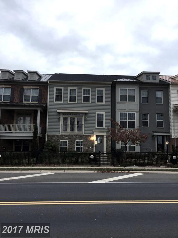 43310 Old Ryan Road, Ashburn, VA 20148 (#LO10025606) :: Pearson Smith Realty
