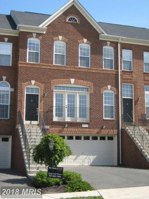42026 Angel Arch Terrace, Aldie, VA 20105 (#LO10125593) :: Pearson Smith Realty