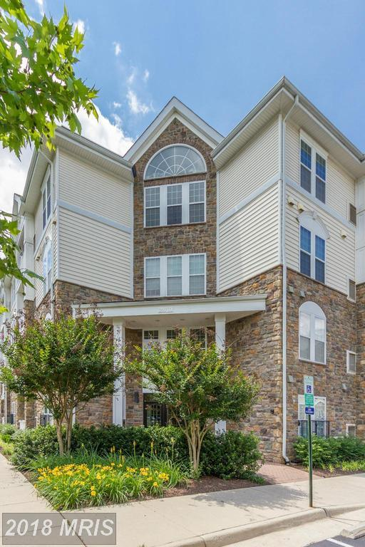24701 Byrne Meadow Square #201, Aldie, VA 20105 (#LO10260967) :: Provident Real Estate