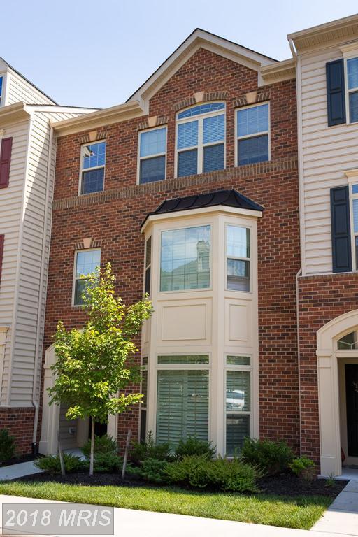 42281 Tackroom Terrace, Aldie, VA 20105 (#LO10290818) :: Pearson Smith Realty