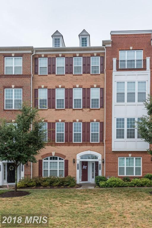 43017 Clarks Mill Terrace #805, Ashburn, VA 20148 (#LO10300953) :: Pearson Smith Realty