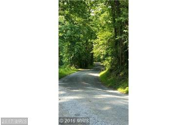 Furnace Mountain Road, Lovettsville, VA 20180 (#LO9744145) :: LoCoMusings