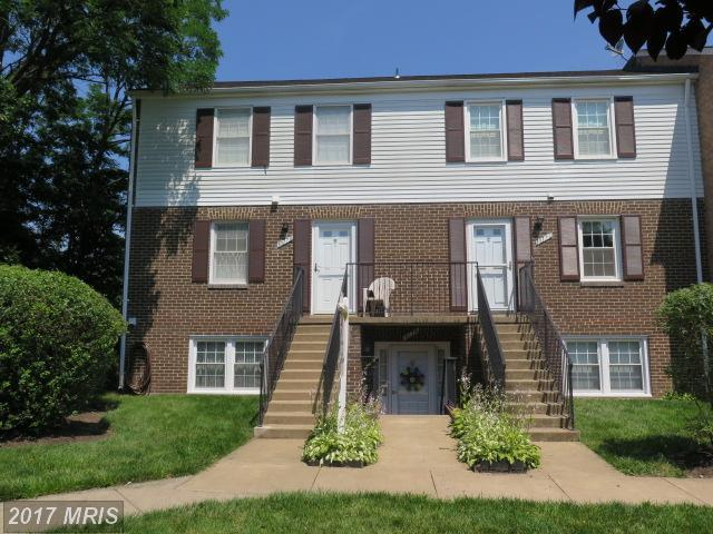 1017-A Margate Court 1017A, Sterling, VA 20164 (#LO9977699) :: LoCoMusings