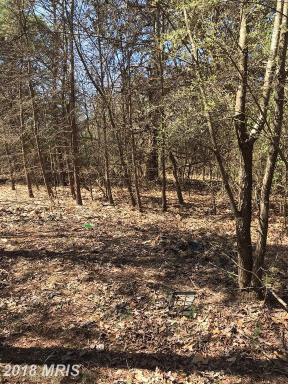 River Road, Berkeley Springs, WV 25411 (#MO10212906) :: Pearson Smith Realty