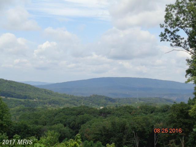 Wv Route 9/24, Paw Paw, WV 25434 (#MO9752706) :: LoCoMusings