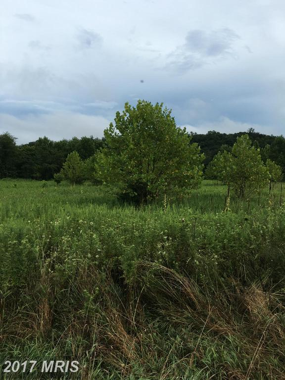 Amulet Drive  Lot 11, Berkeley Springs, WV 25411 (#MO9923284) :: Pearson Smith Realty