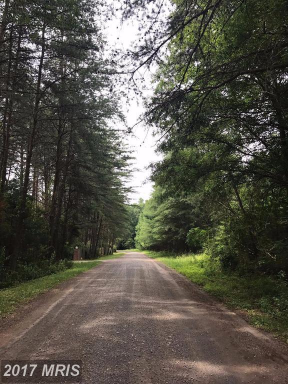 Chancellor Meadows, Locust Grove, VA 22508 (#OR9978883) :: Pearson Smith Realty