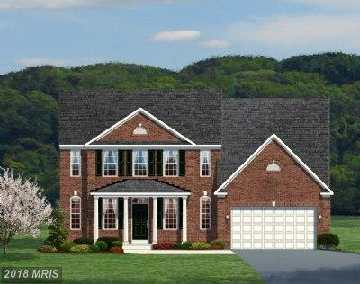 3601 Saint Marys View Road, Accokeek, MD 20607 (#PG10116683) :: AJ Team Realty