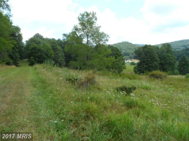 27 Off Rt 33, Moyers, WV 26815 (#PT9724453) :: Pearson Smith Realty
