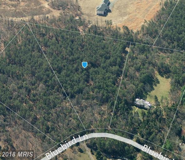 11917 Bluebird Lane, Catharpin, VA 20143 (#PW10124152) :: Pearson Smith Realty