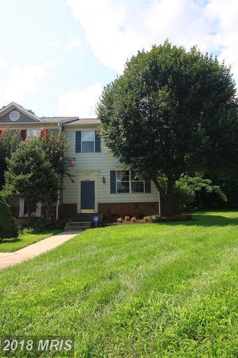15046 Ardmore Loop, Woodbridge, VA 22193 (#PW10316362) :: Jim Bass Group of Real Estate Teams, LLC