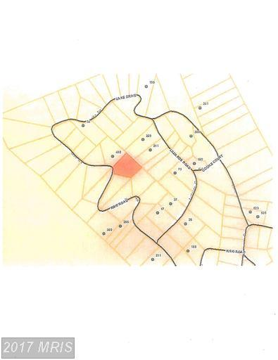 SEC4 LOT40 Risk Road, New Market, VA 22844 (#SH9585091) :: LoCoMusings