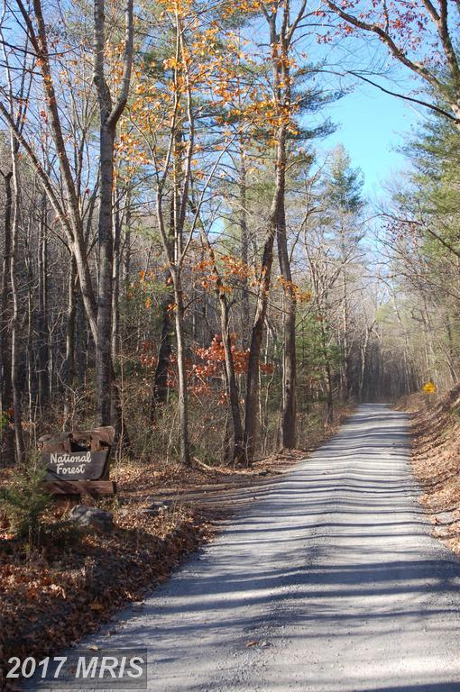 368-LOT Crosswoods Drive, Fort Valley, VA 22652 (#SH9934258) :: Pearson Smith Realty