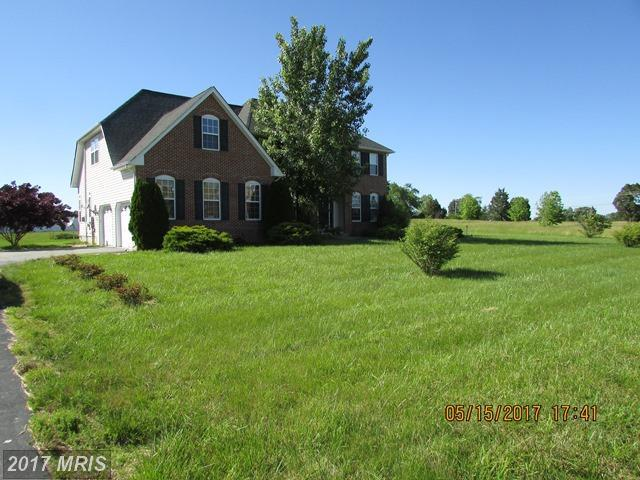38530 Dorothy Mae Court, Clements, MD 20624 (#SM9961052) :: Pearson Smith Realty
