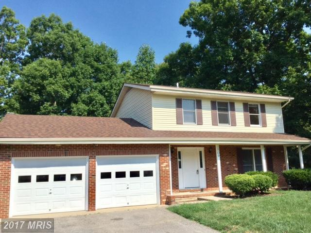 709 Pleasants Drive, Fredericksburg, VA 22407 (#SP10007786) :: Pearson Smith Realty