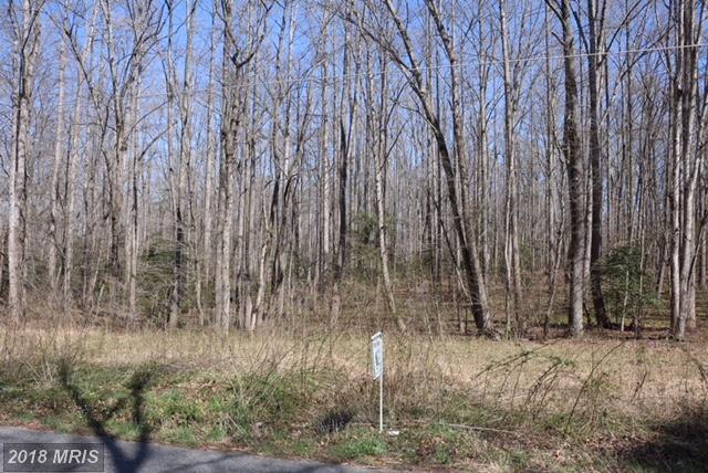 8833 Old Block House Lane, Spotsylvania, VA 22551 (#SP10198796) :: Green Tree Realty