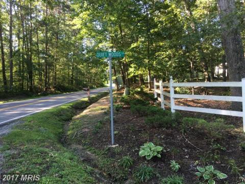 Quiet Woods Lane, Partlow, VA 22534 (#SP9739369) :: LoCoMusings