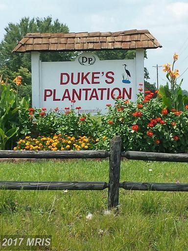 11703 Dukes Drive, Bumpass, VA 23024 (#SP9743051) :: Pearson Smith Realty