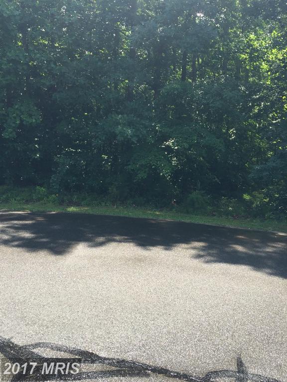7940 Gold Leaf Circle, Spotsylvania, VA 22551 (#SP9984050) :: Pearson Smith Realty
