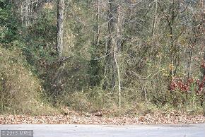 0 Pine Grove And Holly Oak Lot 5, Laurel, DE 19956 (#SU8442183) :: Pearson Smith Realty